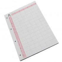 Agenda Loose Leaf Appointment Pages 6 Assistant (x 100)