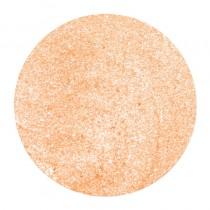 NSI Simplicite PolyDip Color Crem Brulee 7g