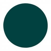NSI Simplicite PolyDip Color Lagoon 7g