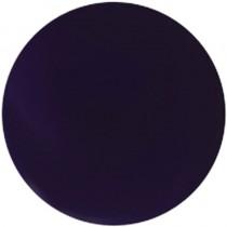 NSI Technail Colour Plum  7g