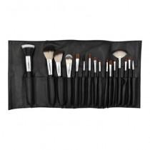Crown Brush Pro 16 Piece Essentials Brush Set