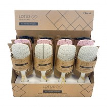 Lotus Eco-friendly Detangling Brush 12pc Display